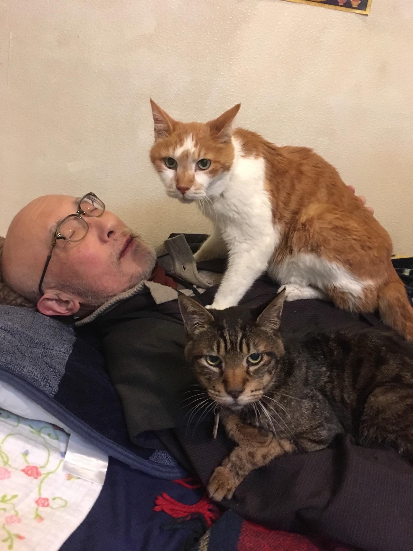 猫の手が丁度、胃と食道のあたりをムニムニ😼 人を癒すべき僧侶を癒してます🙏